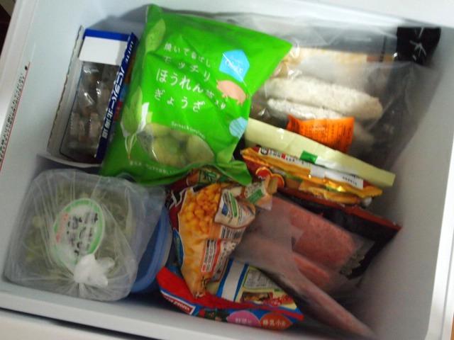 冷凍庫 下